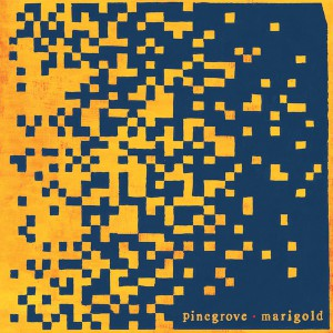Marigold by Pinegrove