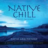 Native Chill- Spirits Calling
